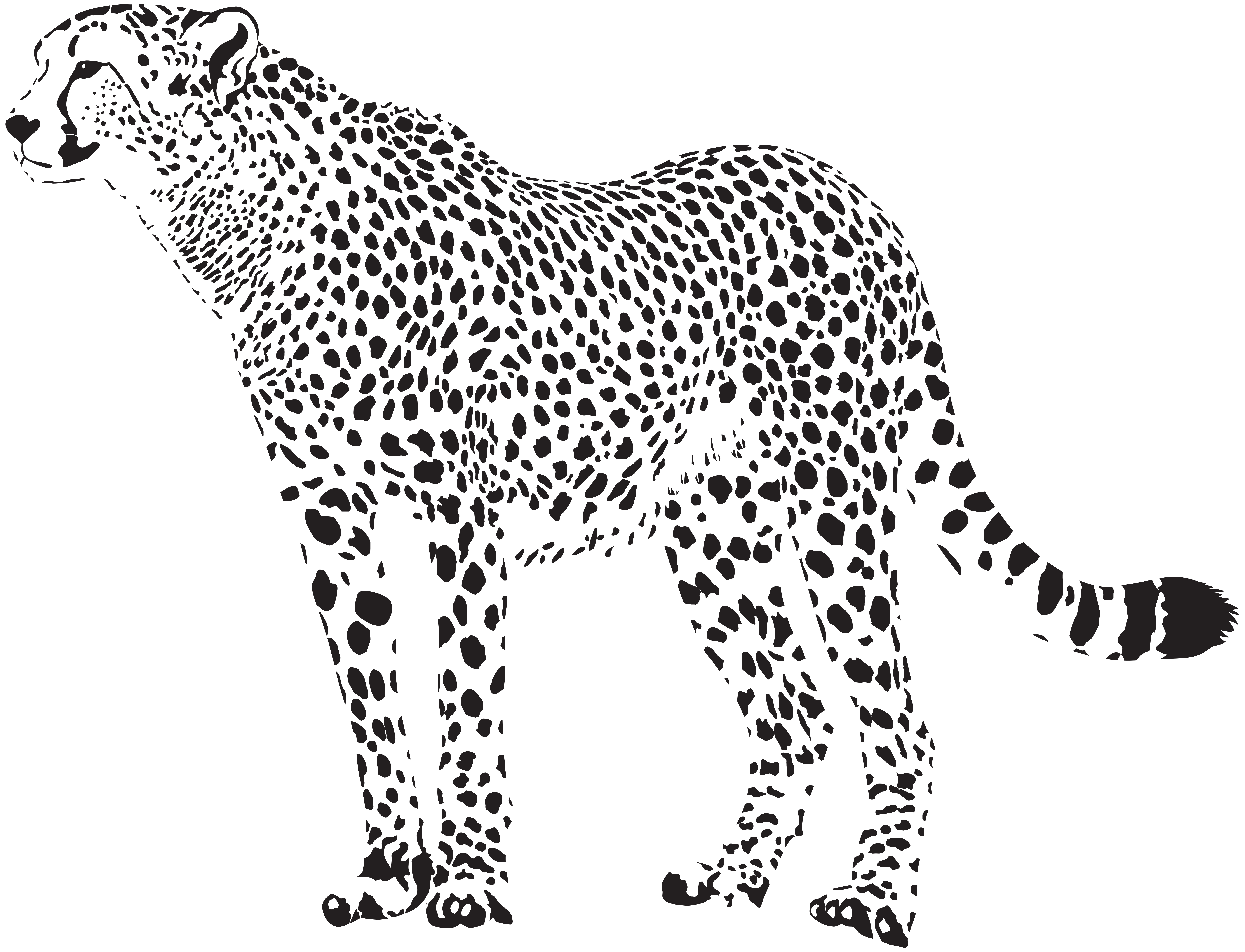 Cheetah stripes png. Silhouette transparent clip art