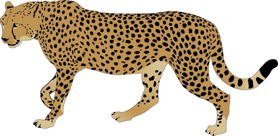 Clipart . Cheetah tag png clipart black and white download