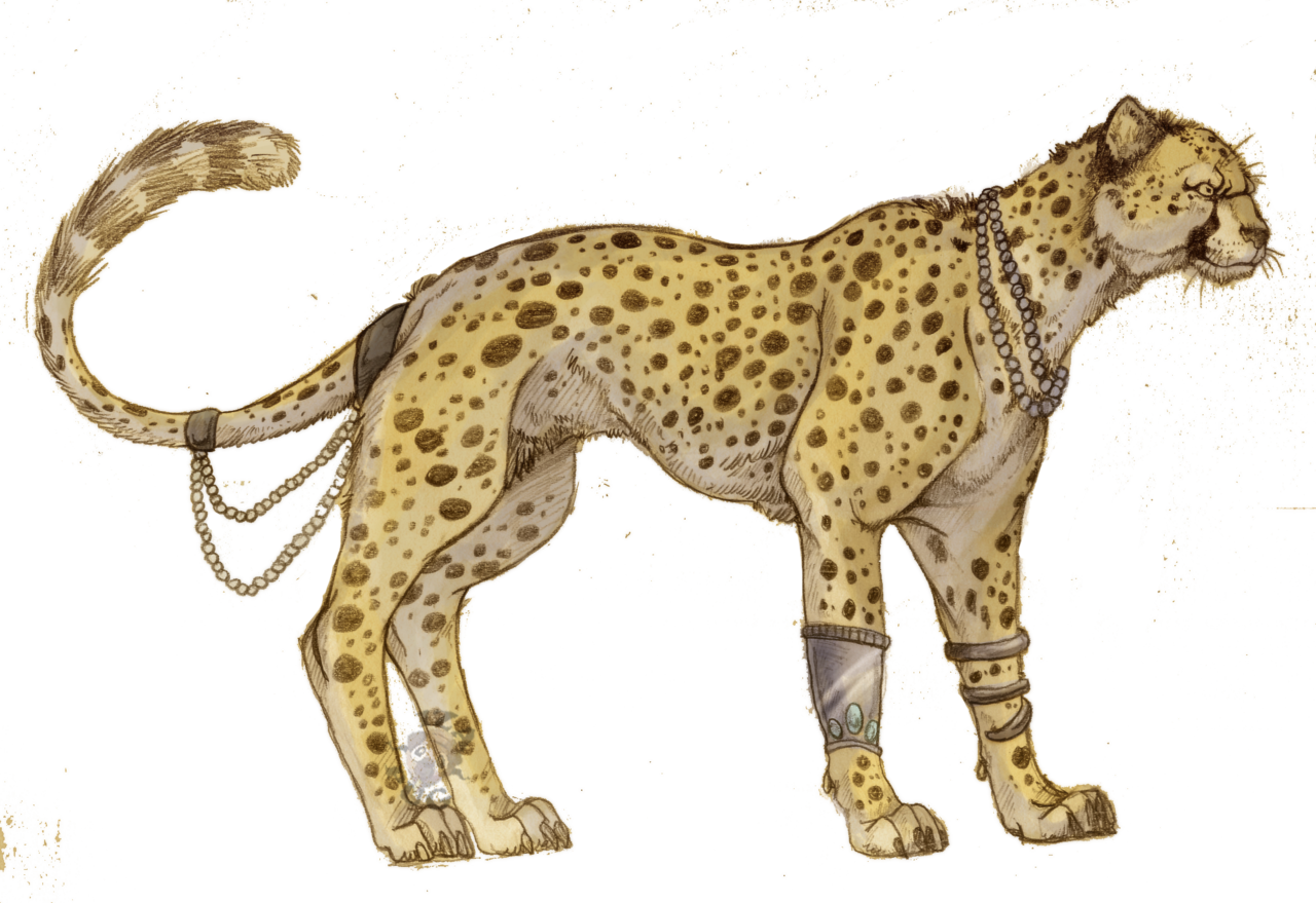 Cheetahs drawing color. Collection of anime
