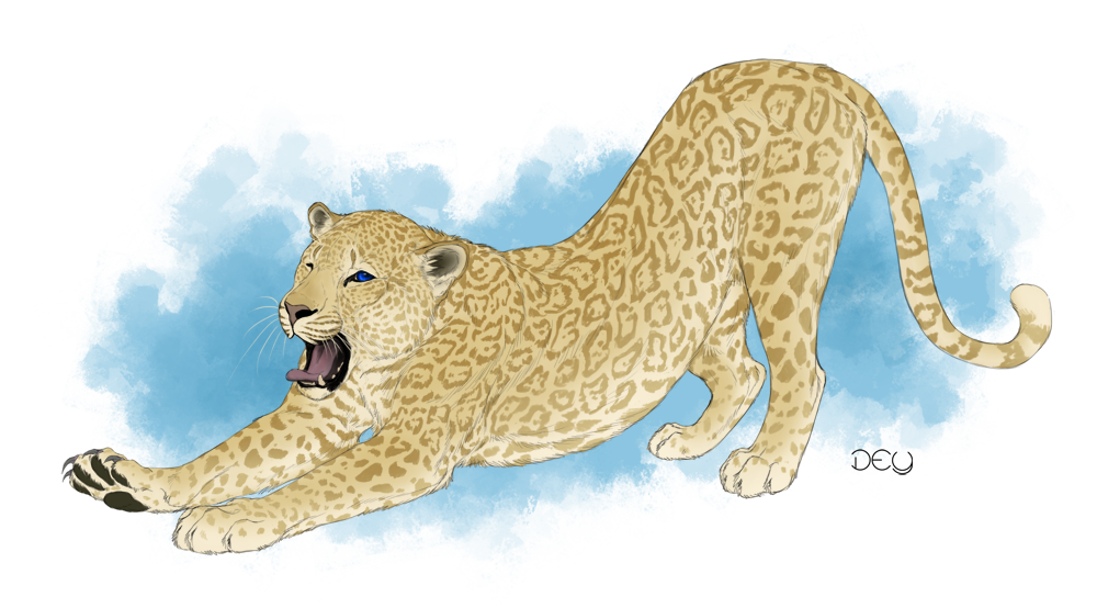Cheetahs drawing color. Commission for flat character