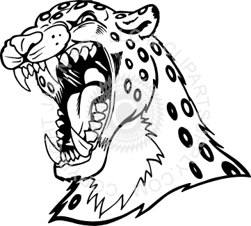 Cheetahs drawing head. Leopard at getdrawings com