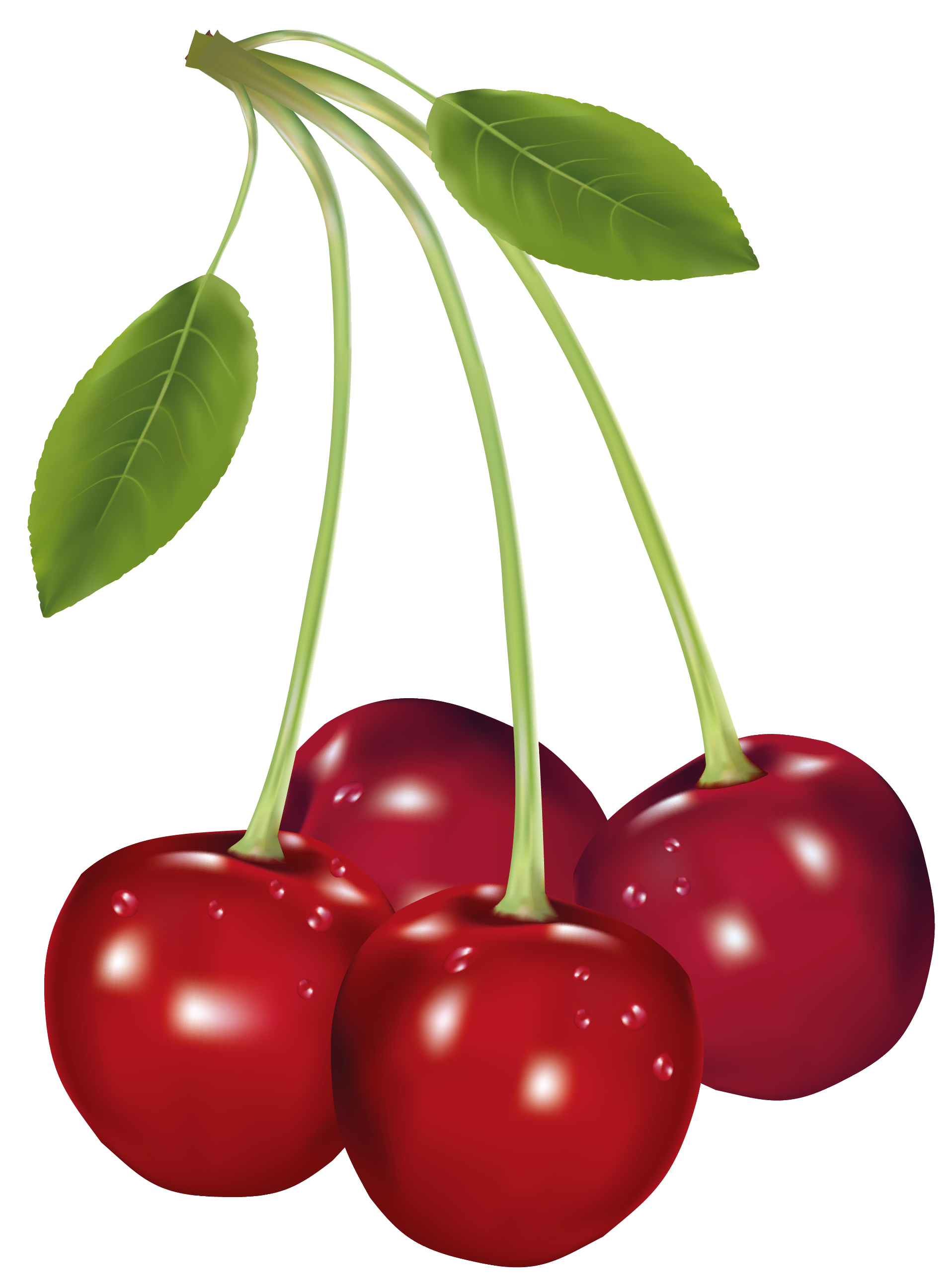 Cherries clipart cherrie. Png picture gallery yopriceville