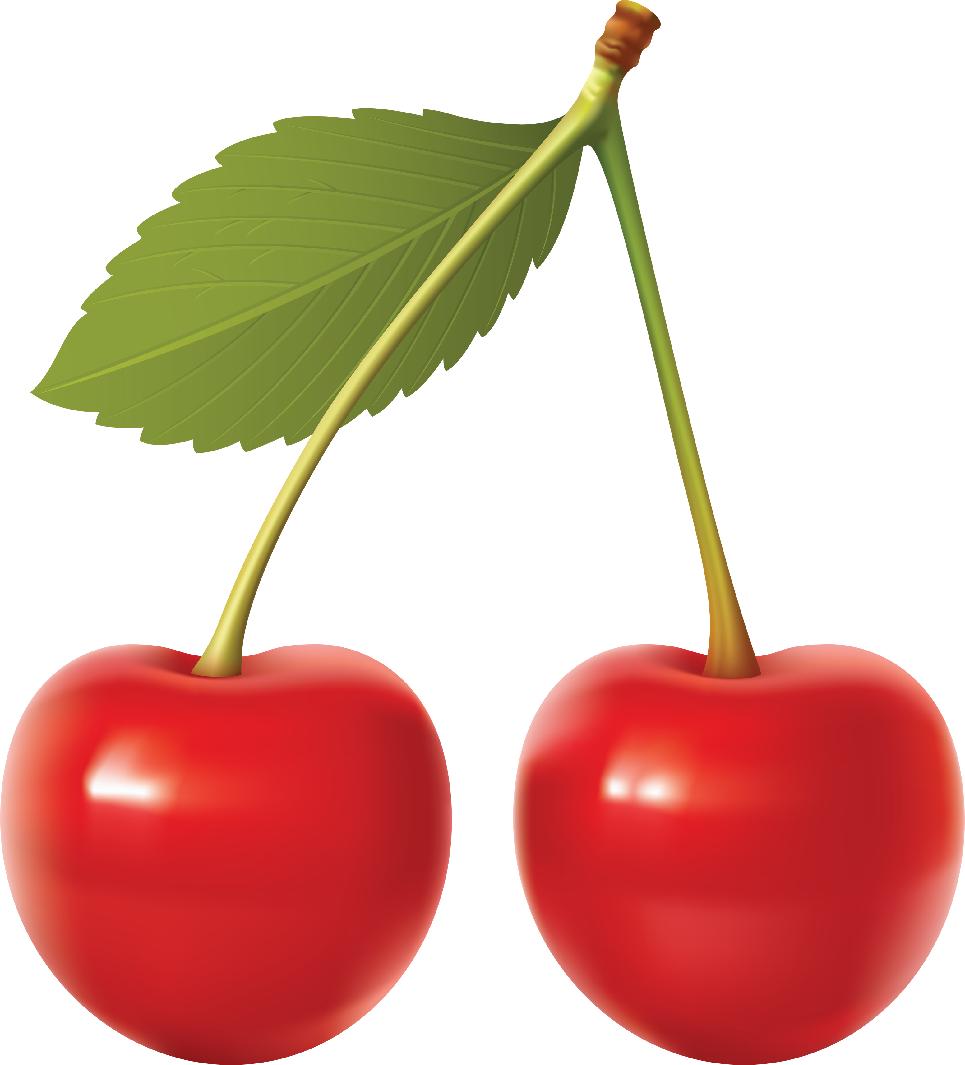 Cherry png. Free cherries cliparts download