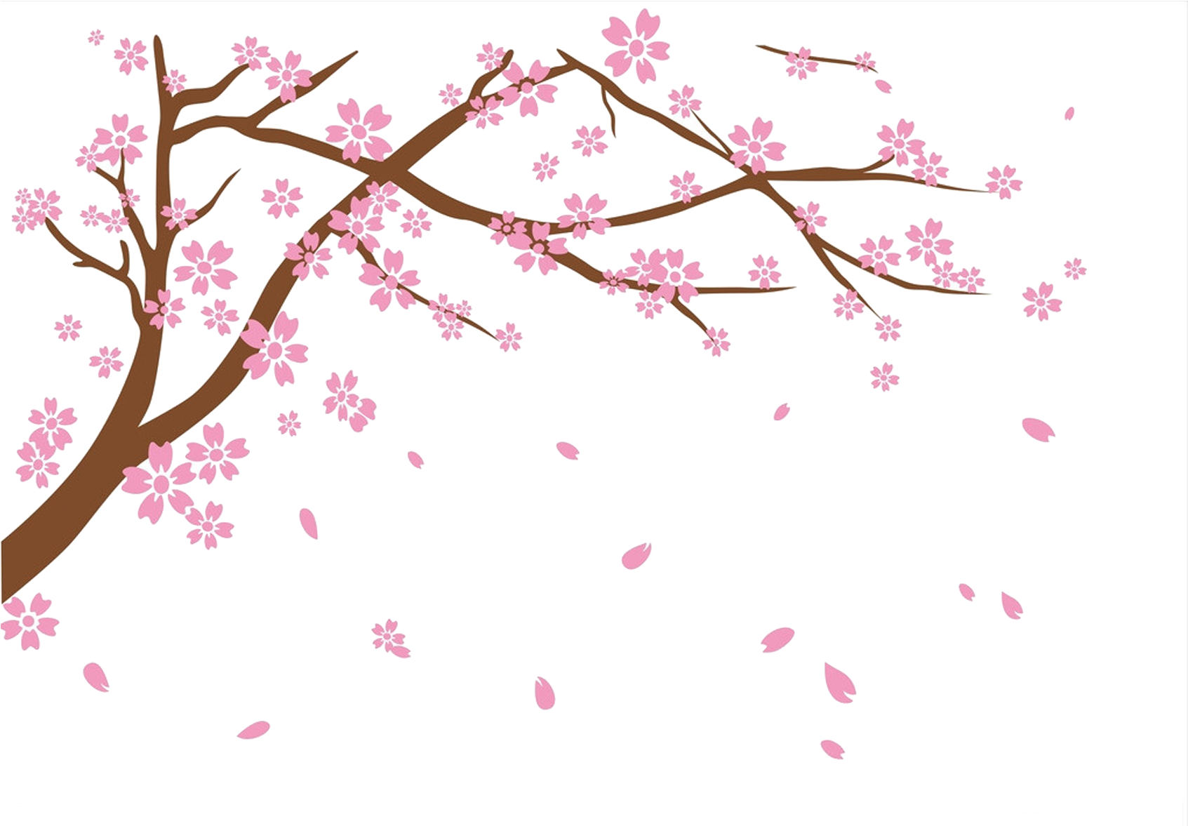 Falling cherry blossom png. Download hd national festival