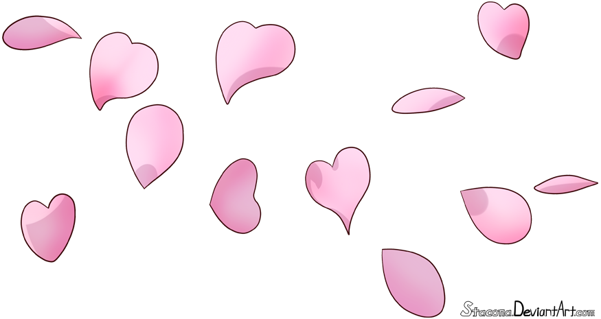 Cherry blossom petals png. By stacona on deviantart
