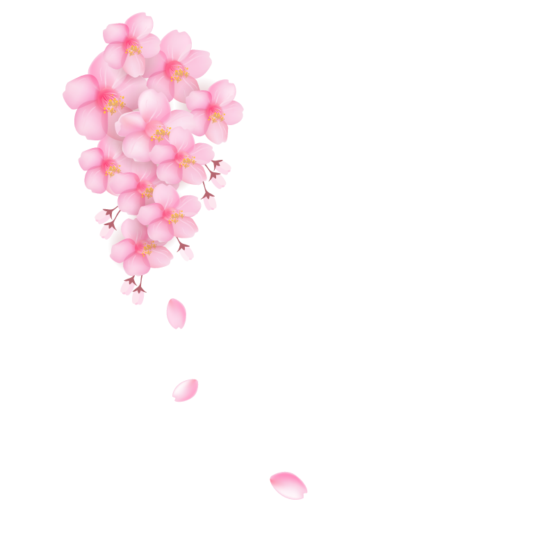 Cherry blossom petals png. Download petal pink tree