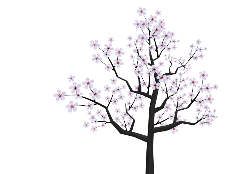 Blossom drawing sakura tree. Cherry tumblr at getdrawings