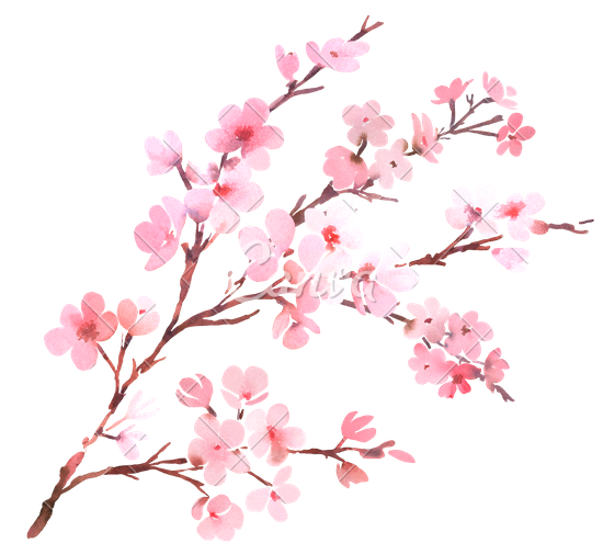 Images free icons and. Cherry blossom png svg freeuse stock