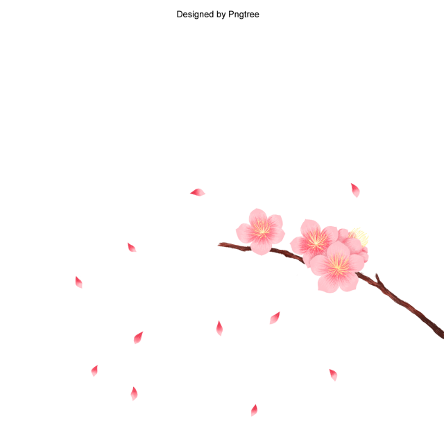 Cherry blossom vector png. In spring time peach