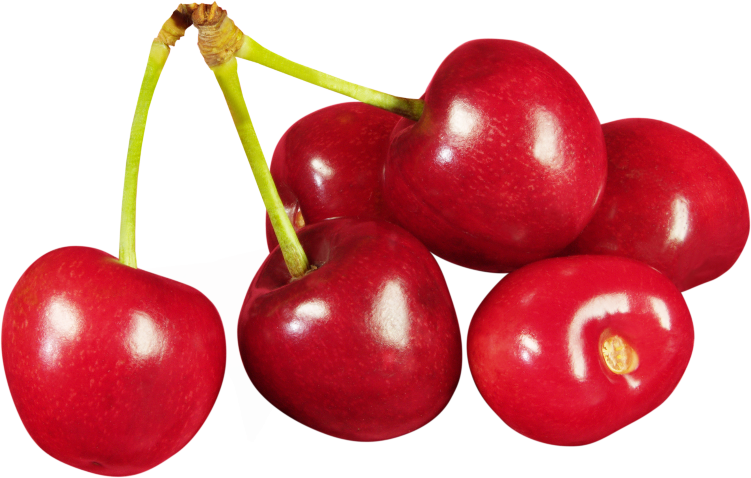 Cherry clipart cherry outline. Png images free download
