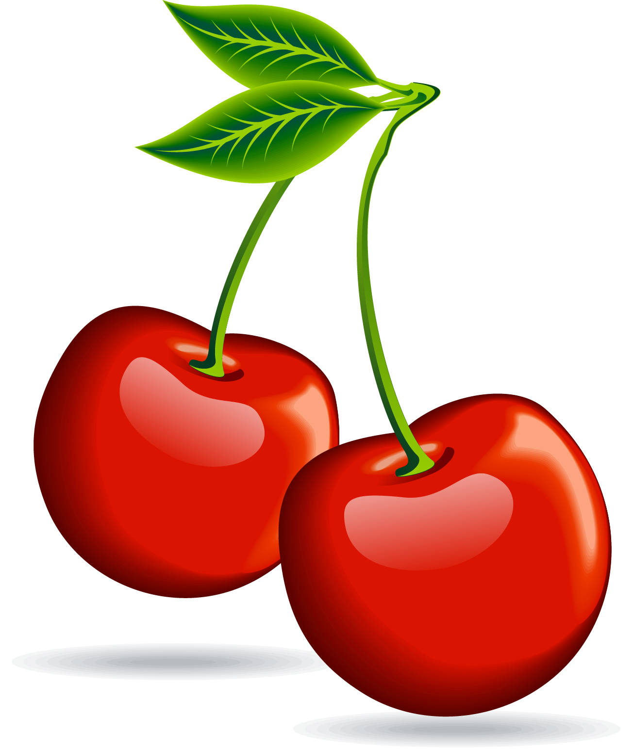 Cherry clipart png. Collection of transparent