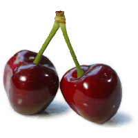 Cherry png. Download free photo images