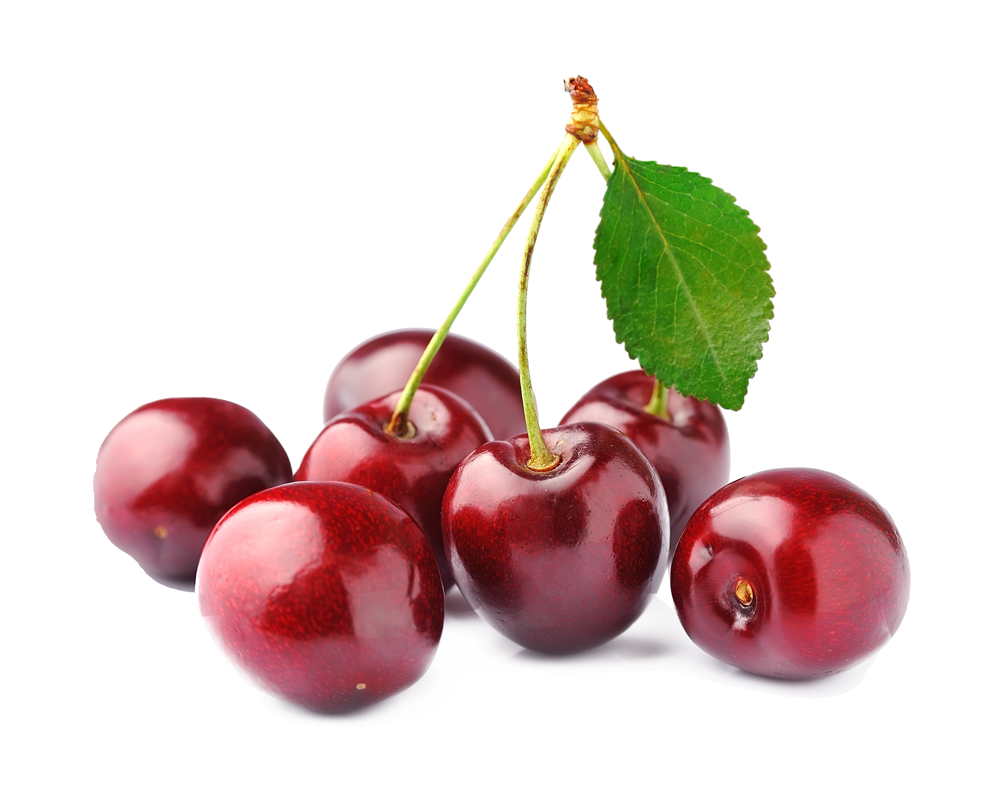 Cherry png. Images