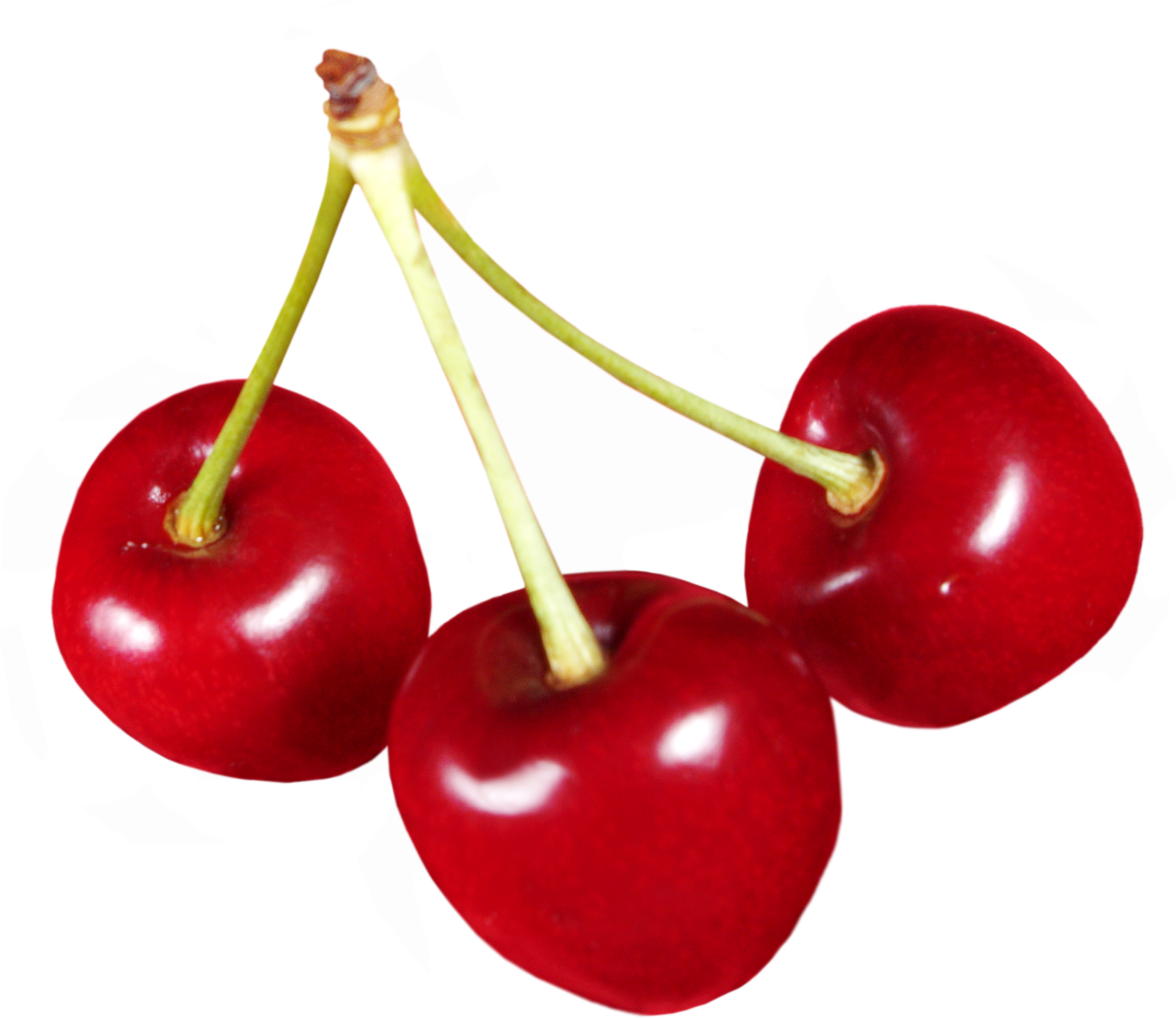 Cherry png. Images free download cherries