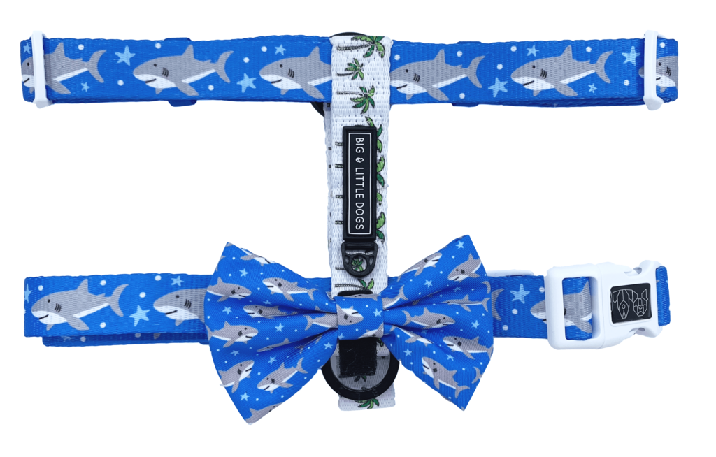 Chest clip harness tie. Dog for big small