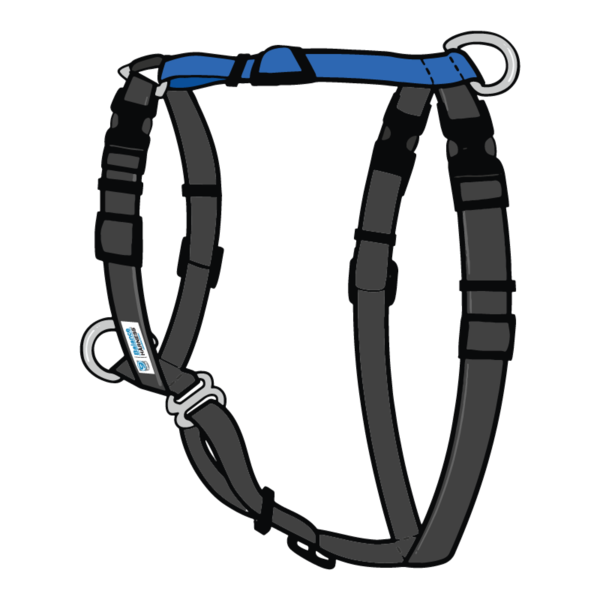 Dring clip harness. Balance buckle neck pinit