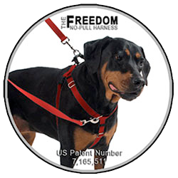 Chest clip harness tie. Best harnesses for