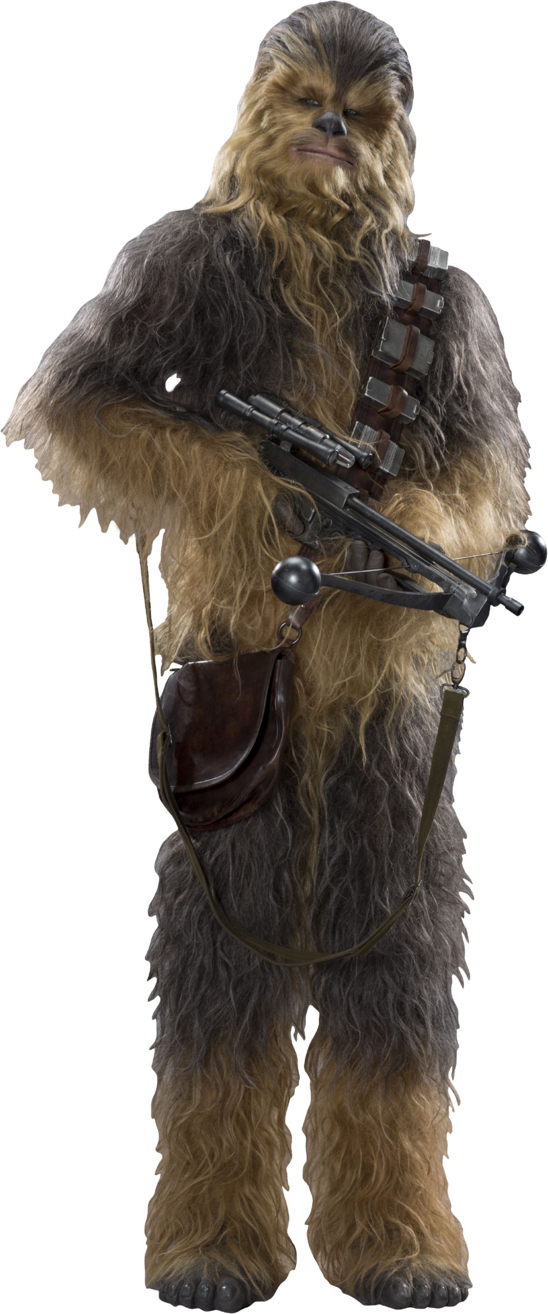 Chewbacca png. Image vs battles wiki