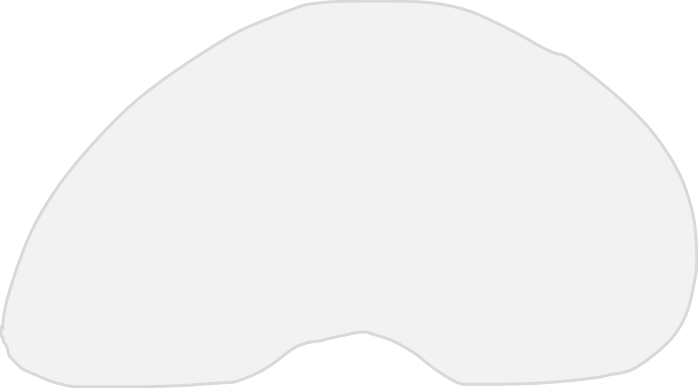 chicago bean png