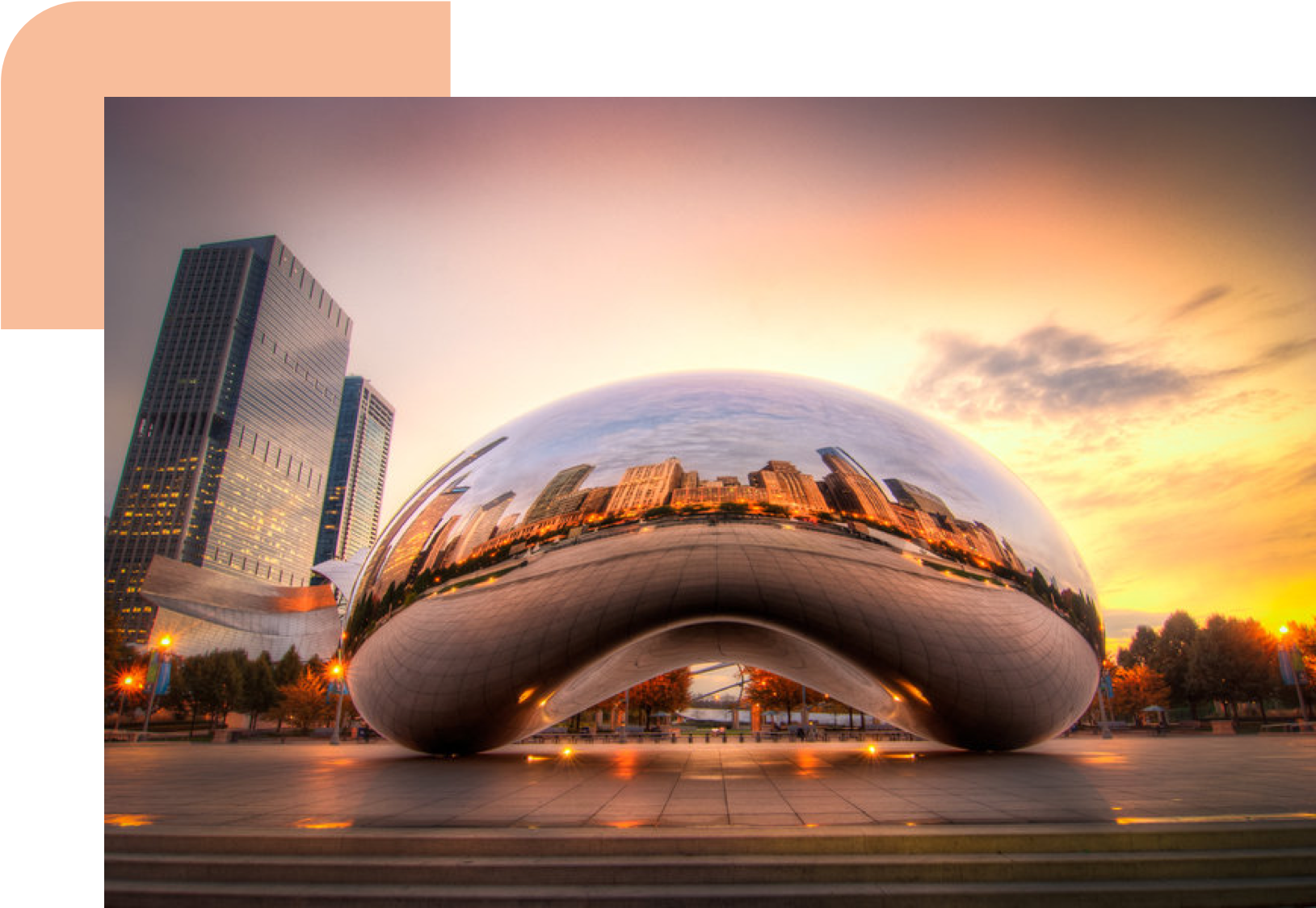 Chicago transparent bean. About us tangocode developing
