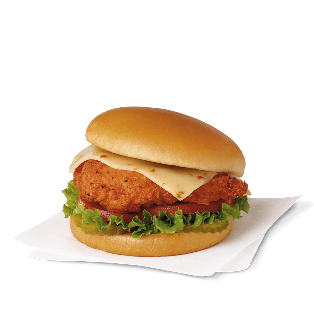 Vector sandwich chicken. Spicy deluxe nutrition and