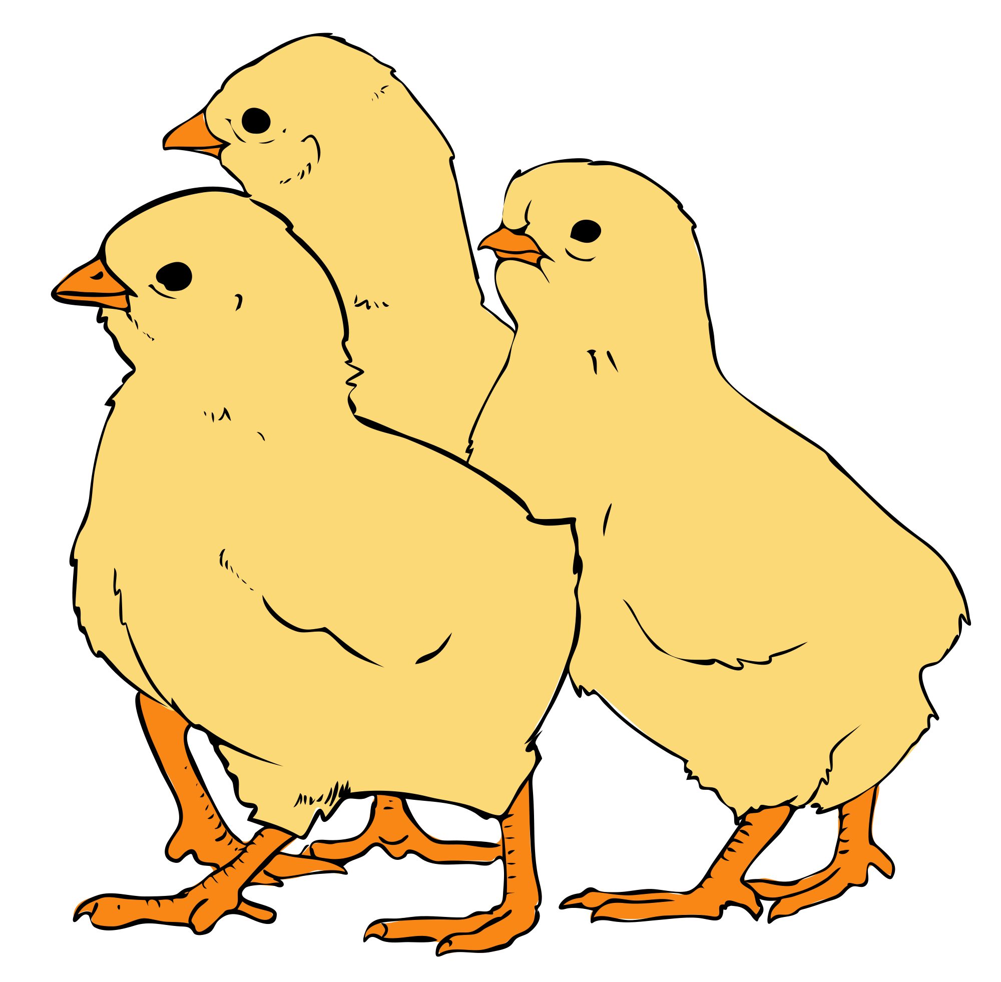 Chick transparent 3 baby. File chicks clipart svg