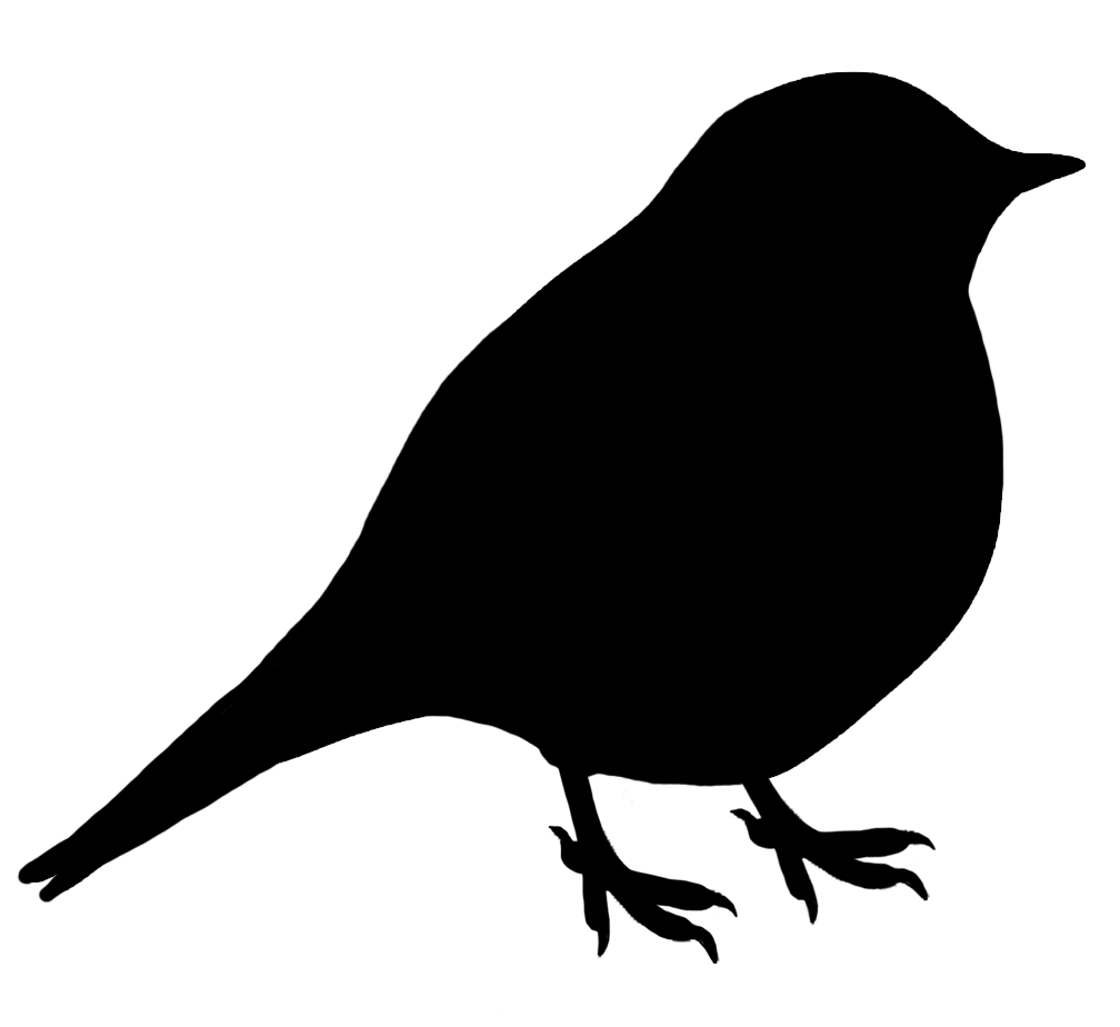 Chickadee vector. Silhouette at getdrawings com