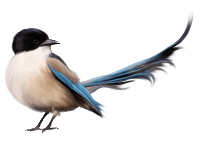Chickadee vector stylized. Download free png merle