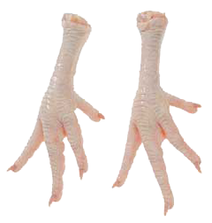 Chicken feet png. Image