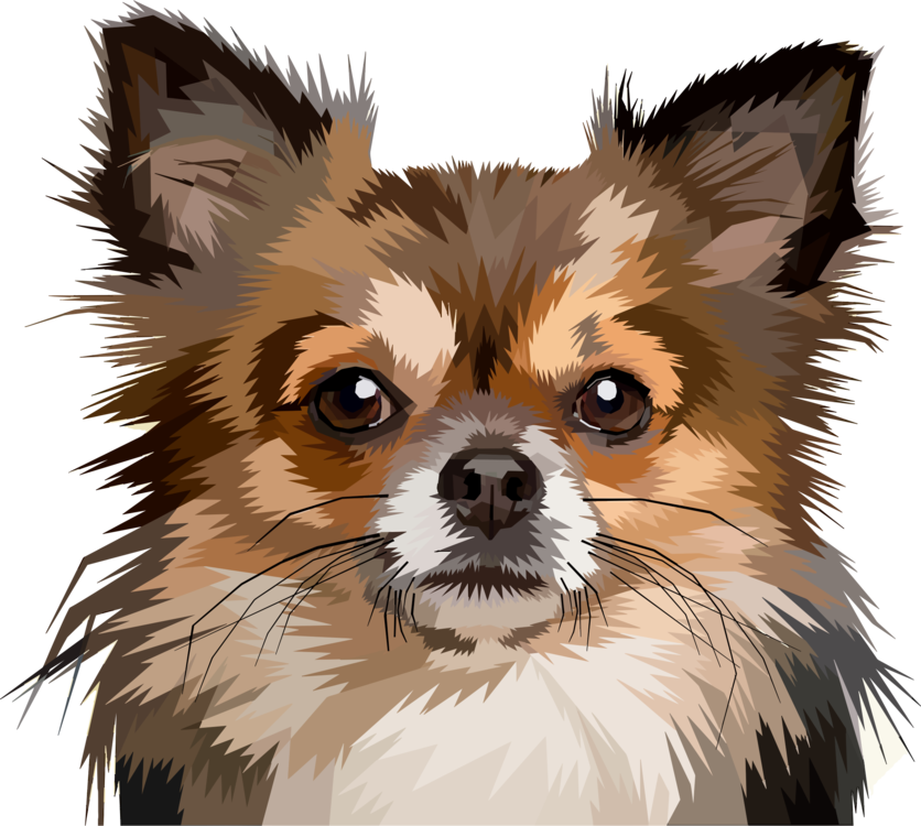 Dogs vector geometric. Chihuahua puppy pomeranian pet