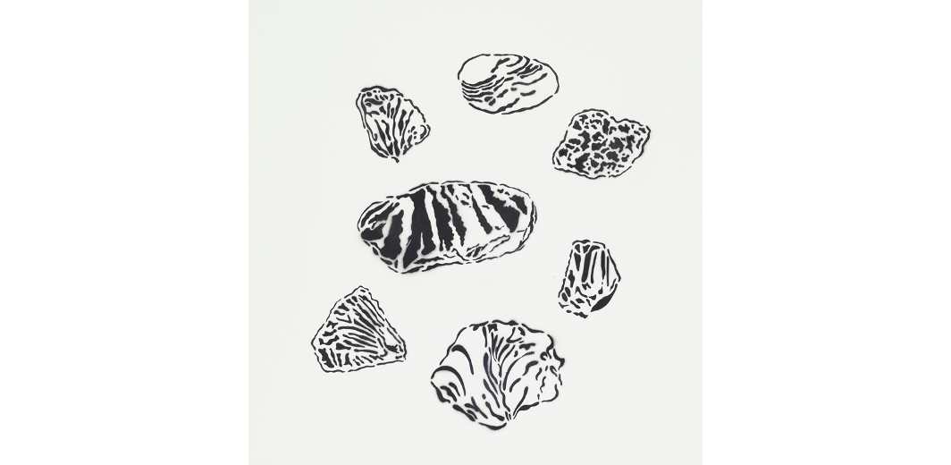 Chihuly drawing paper. Chelstad paul image not