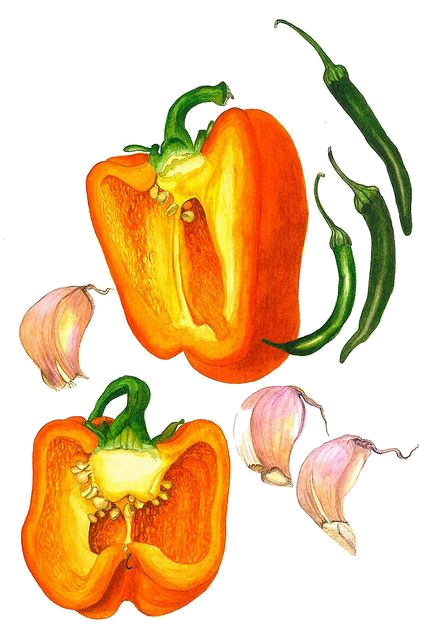 Tomatoes drawing pepper