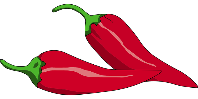 Chili drawing chilli. Red peppers hot spices