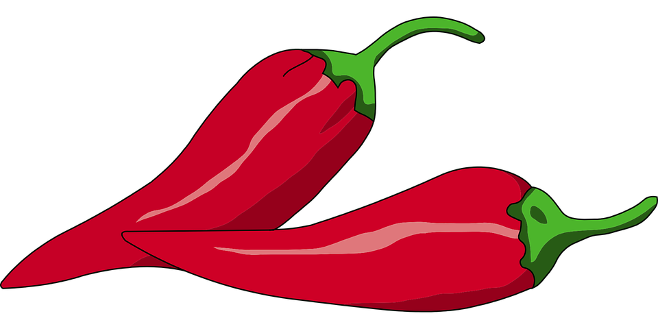 Chili drawing spicy. Collection of free chilli