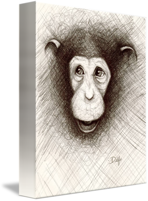 Chimp drawing colored paper. Hello the by jenn
