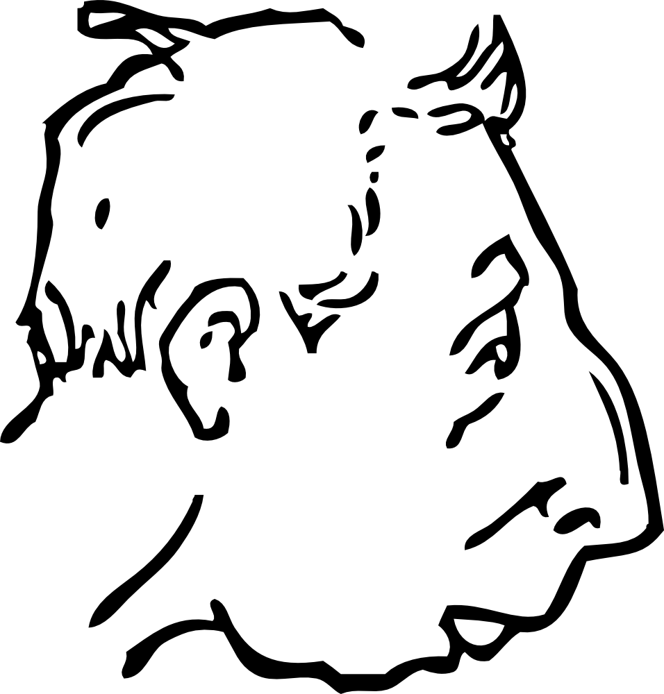 Chin drawing. Onlinelabels clip art weak