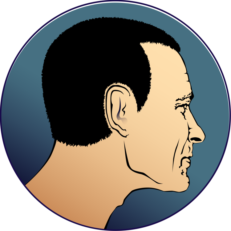 Chin drawing clip art. Computer icons head face