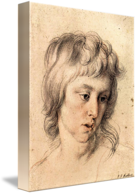 rubens drawing old master