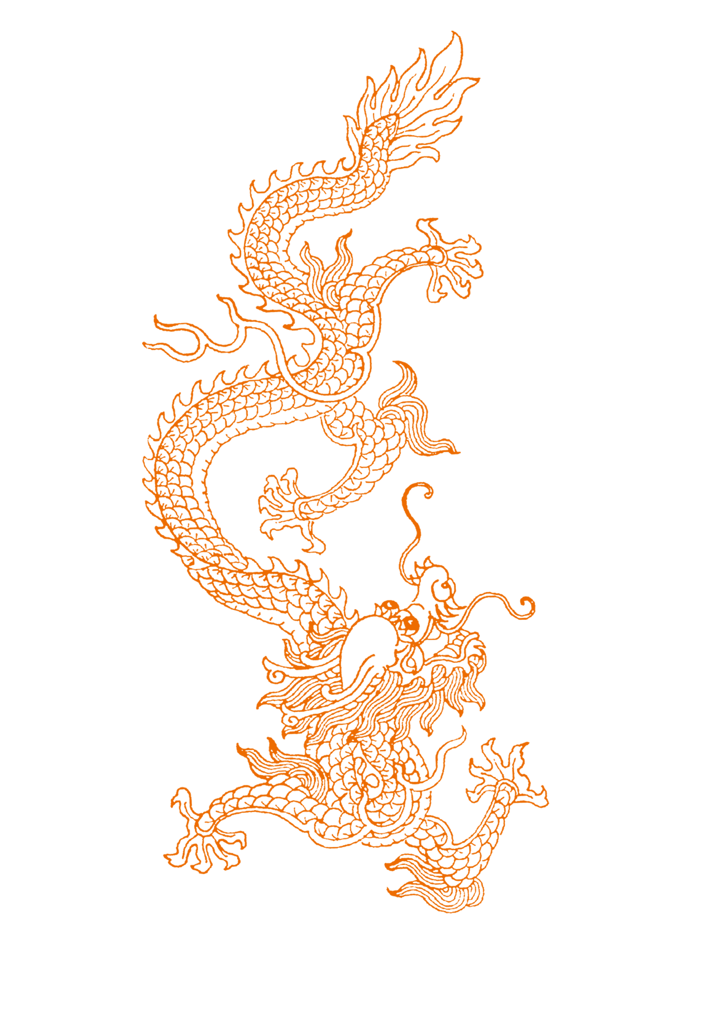 China transparent full body. Chinese dragon long lines