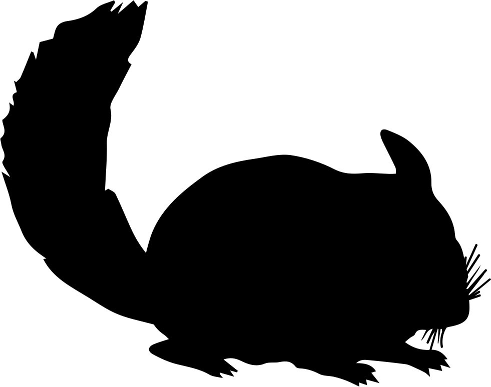 Chinchilla footprint png. Mammal animal silhouette svg