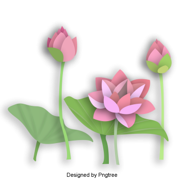 Chinese flowers png. Origami images vectors and