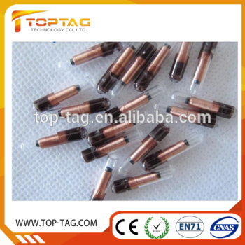 Chips transparent glass. Disposable rfid tag injection