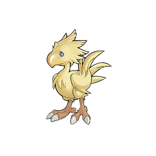 Chocobo drawing cartoon. Final fantasy wiki fandom