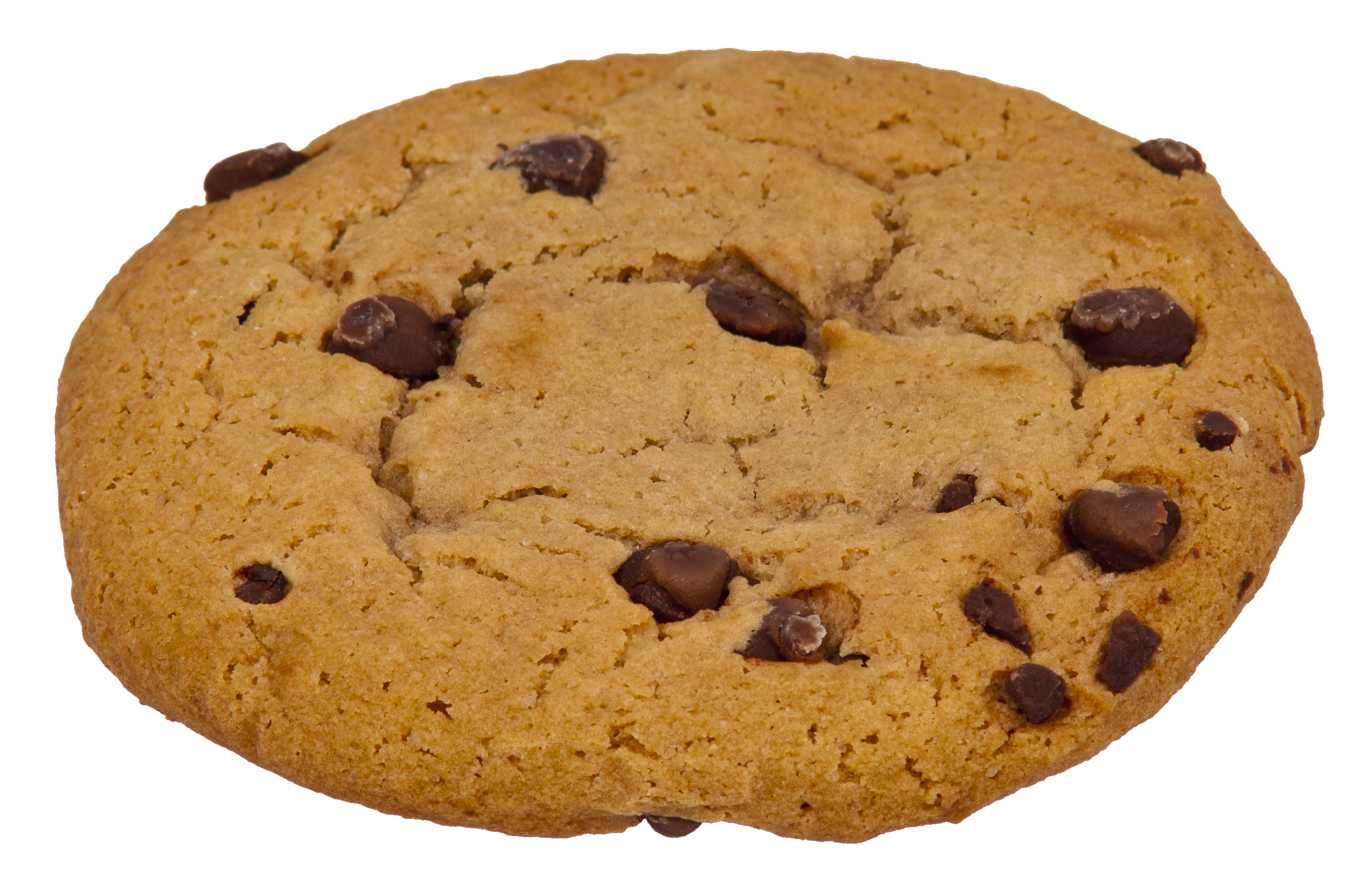 Chocolate chip cookie png. File choc wikimedia commons