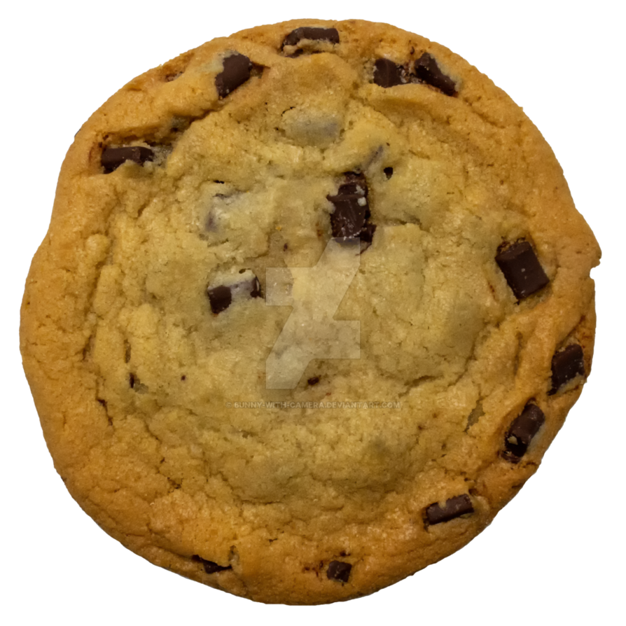 Chocolate chip cookie png. By bunny with camera