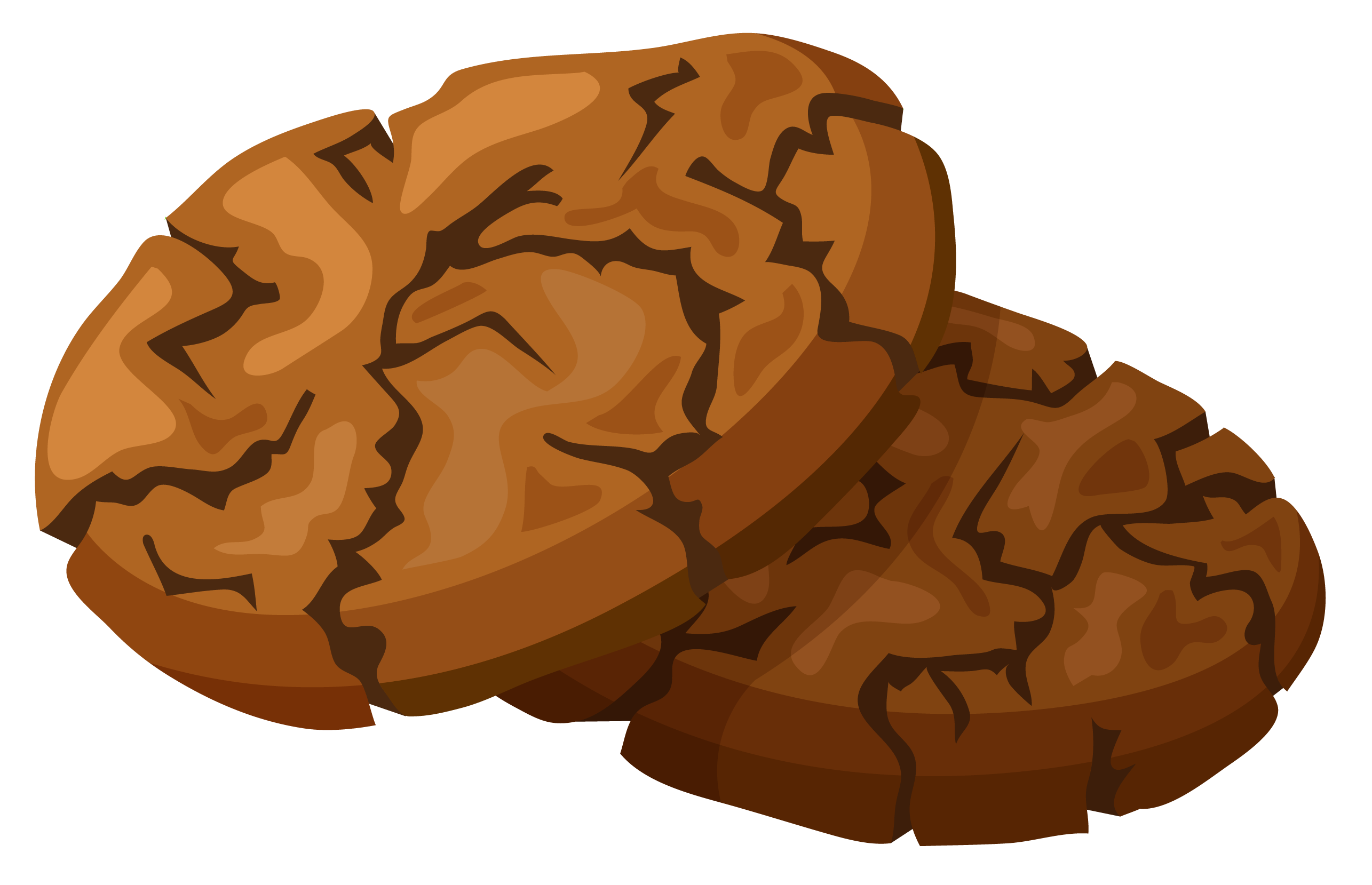 cookie png burnt