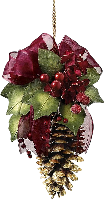 Christmas decorated pine cones png. Pinecone beautiful wreath pinterest