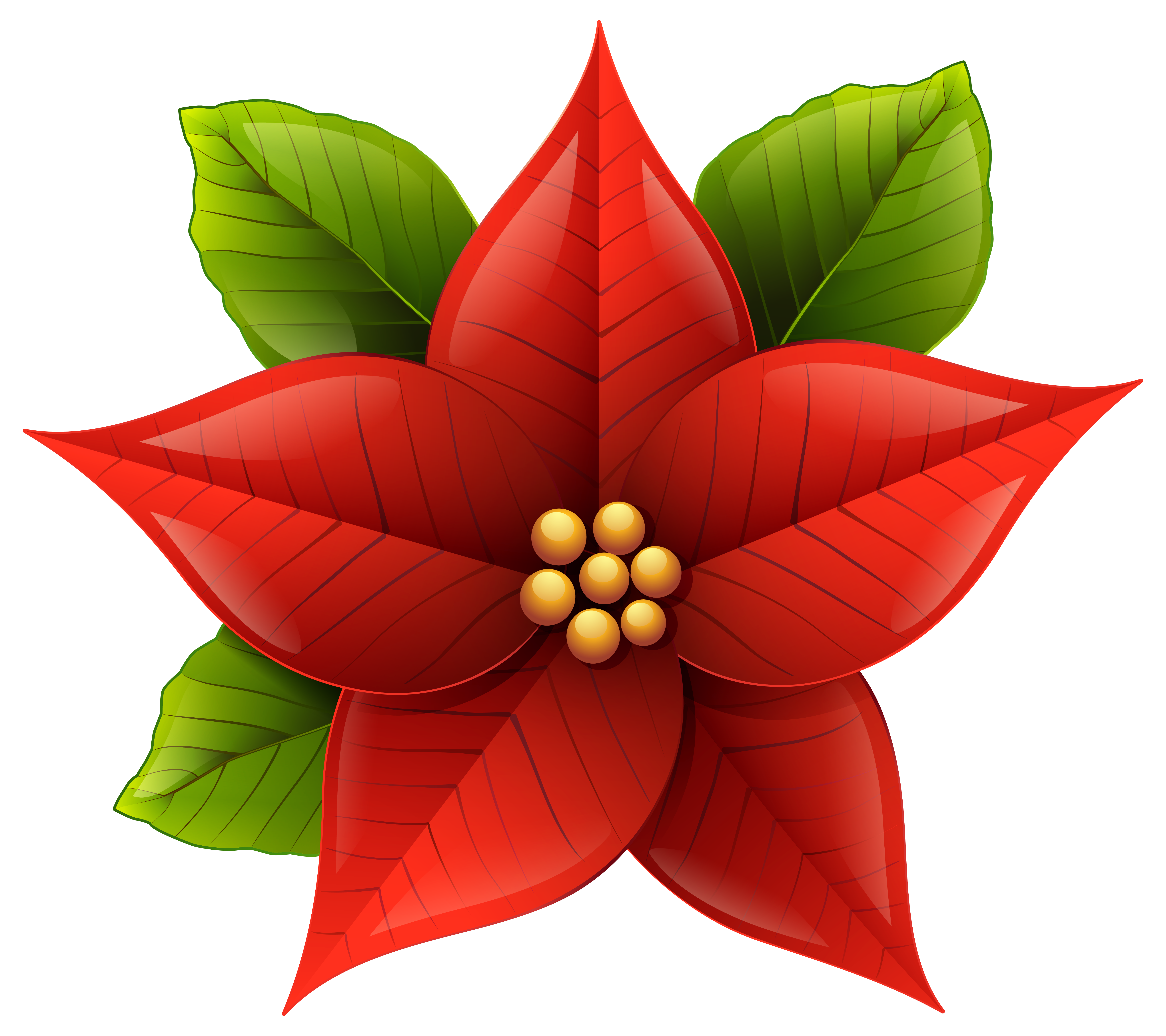 Christmas poinsettia png art. Poinsetta clip png stock