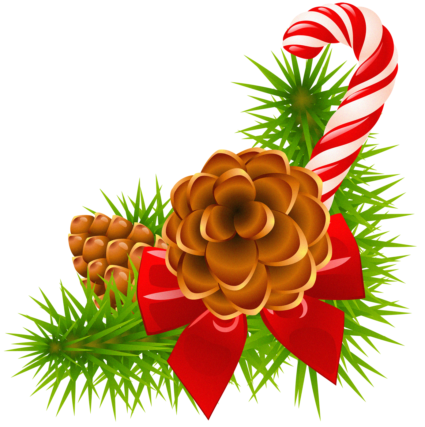 Christmas greenery png. Pine branch with cones