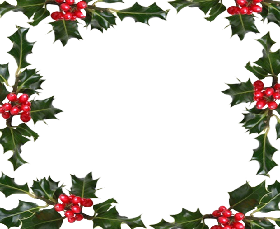 Christmas holly border png. Collection of berry
